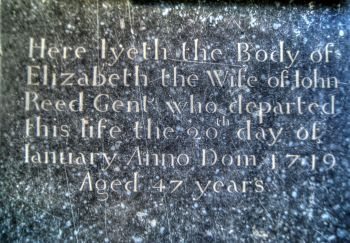 Elizabeth Reed